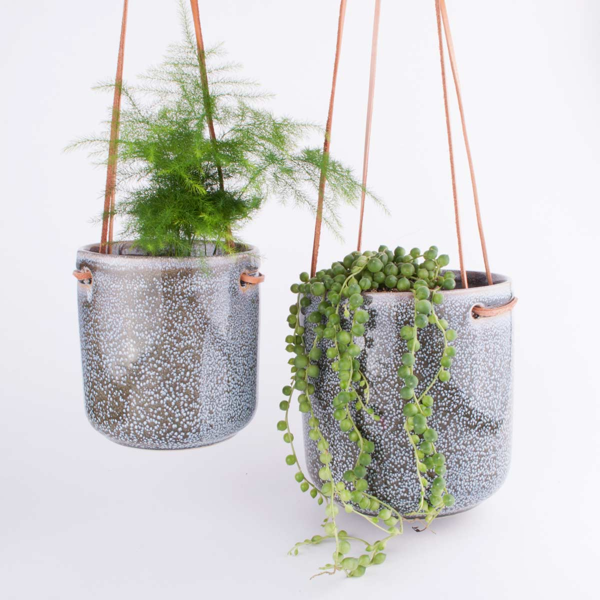 hanging_planter_hopscotch