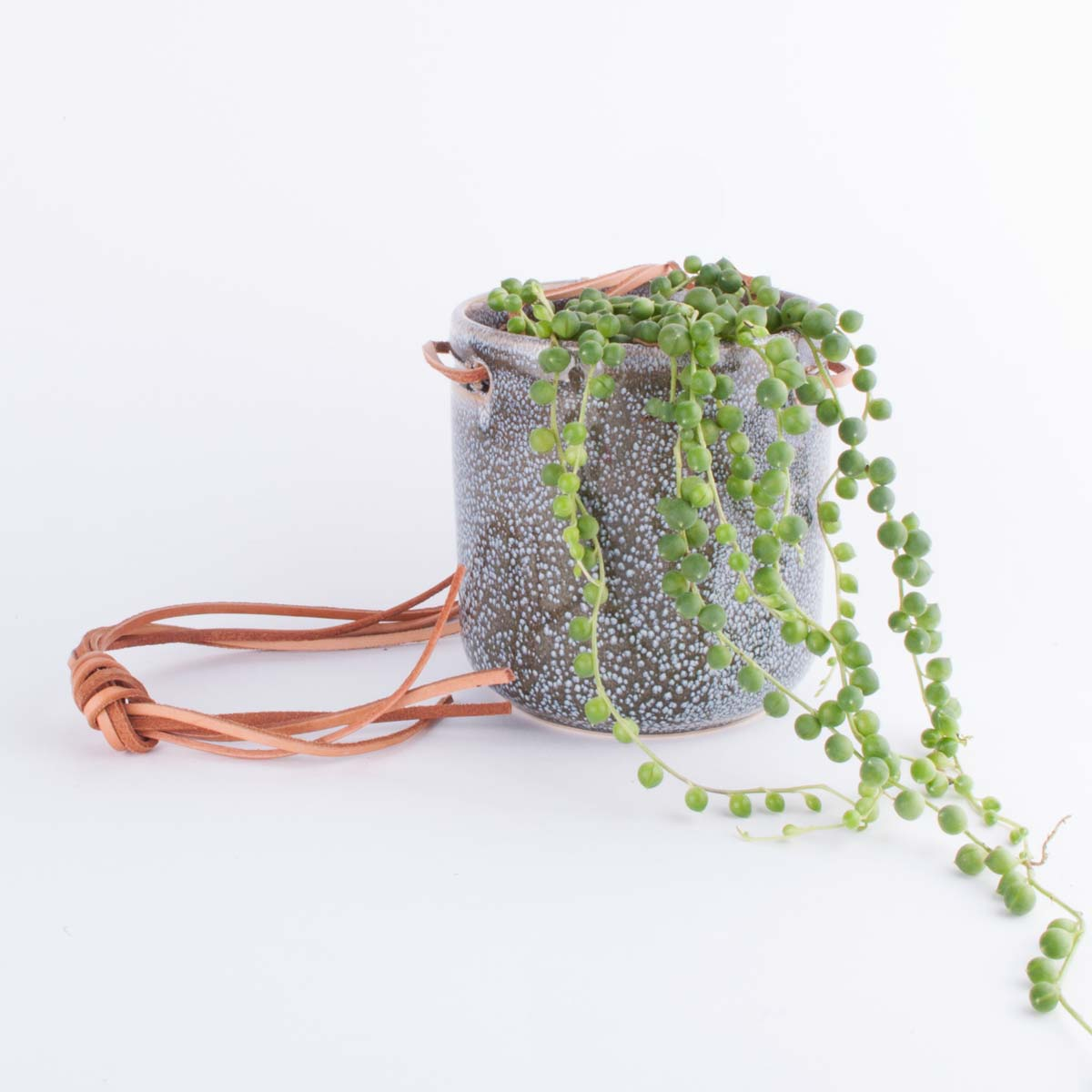 small_hanging_planter-2